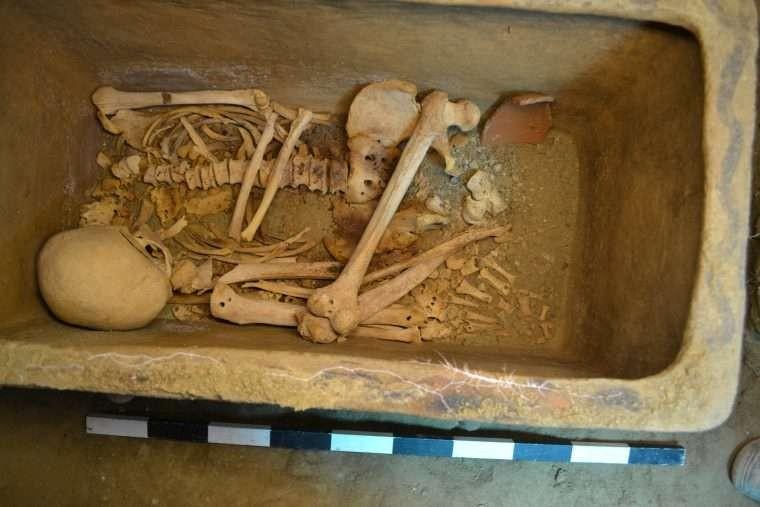 Dois esqueletos masculinos foram achados dentro da tumba (Foto: Greek Ministry of Culture)