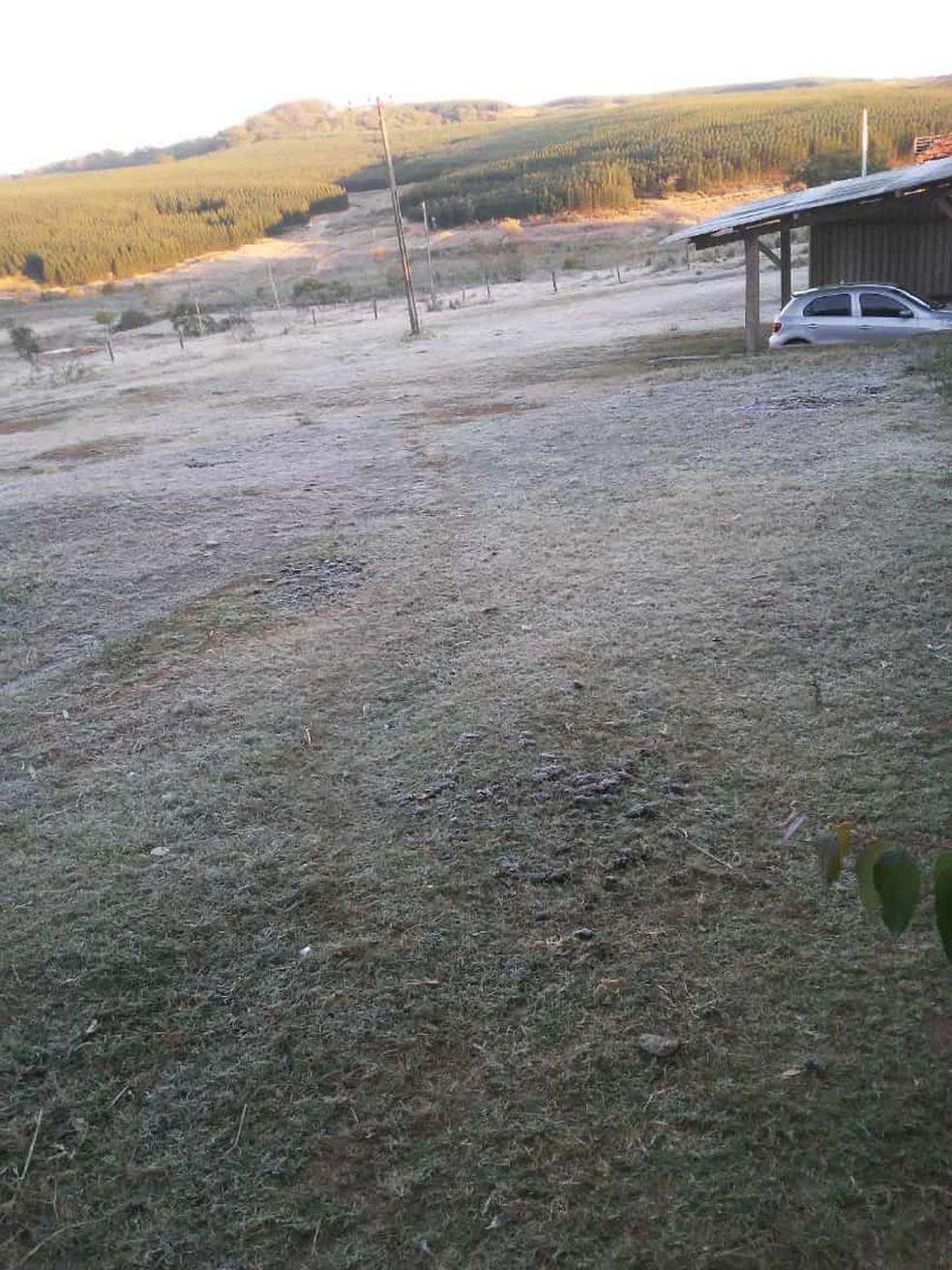 Na Fazenda Santa Terezinha em Júlio Mesquita também houve registro de geada nesta terça-feira — Foto: Arquivo pessoal
