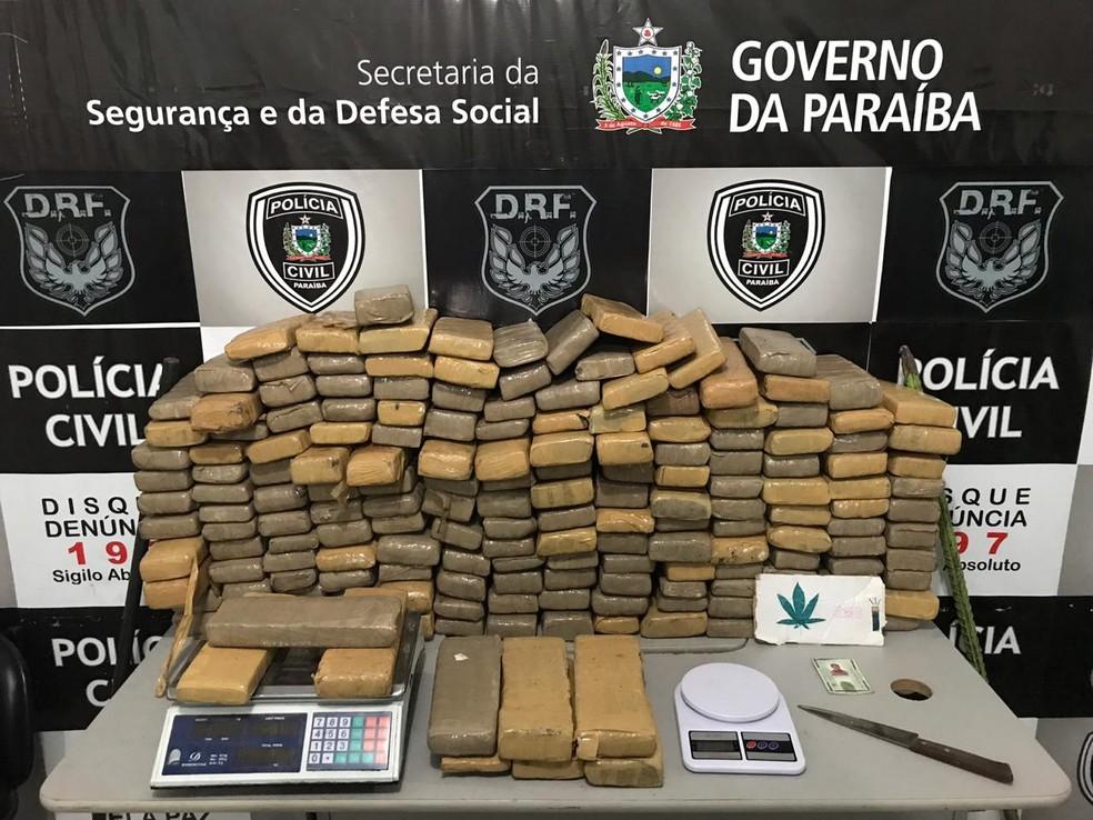 Quase 200 quilos de maconha são apreendidos dentro de apartamento, em Campina Grande — Foto: Polícia Civil/Divulgação