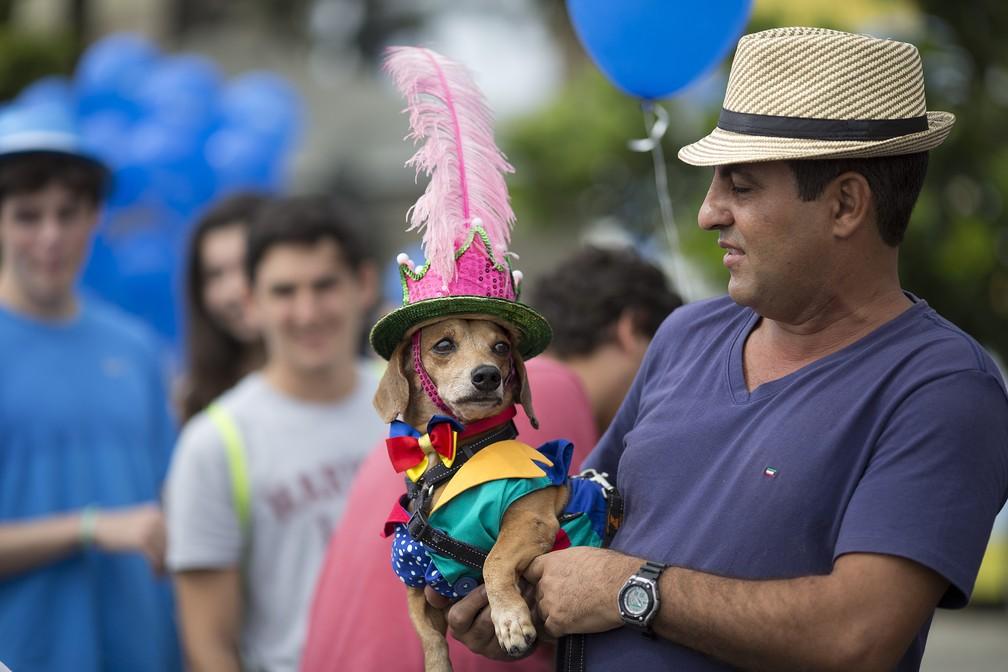 Cachorro fantasiado participa de desfile de pré-carnaval em Copacabana (Foto: Silvia Izquierdo/AP)