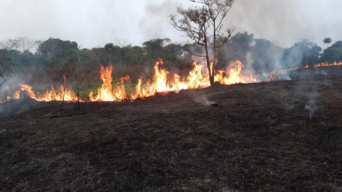 Com chamas de até 2 metros, queimada de grandes proporções atinge área de 10 hectares no AC - Notícias - Plantão Diário