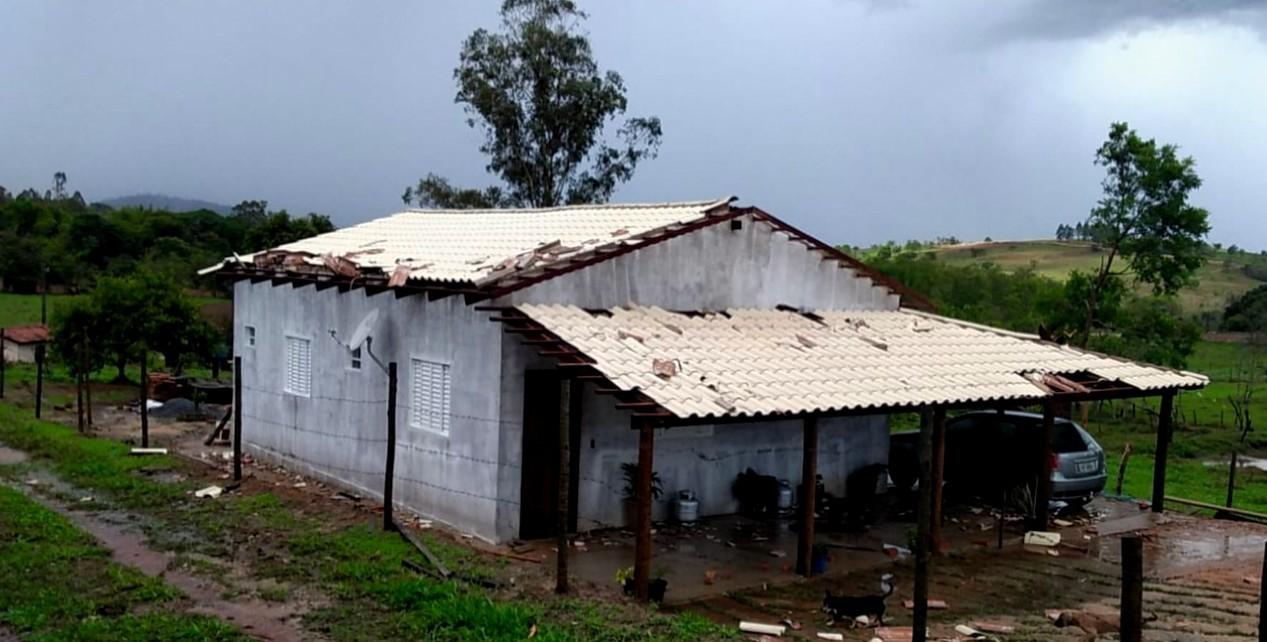 Chuva forte destelha casas e derruba árvores em Patos de Minas