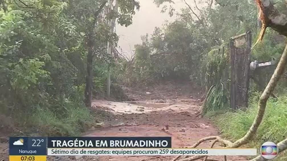 Destruição na zona rural de Brumadinho vista na manhã desta quinta — Foto: Reprodução