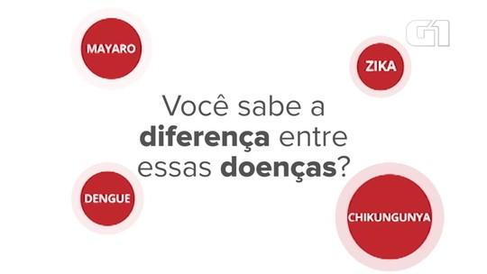 Mortes por dengue chegam a quase 300 no Brasil, o triplo do mesmo período de 2018