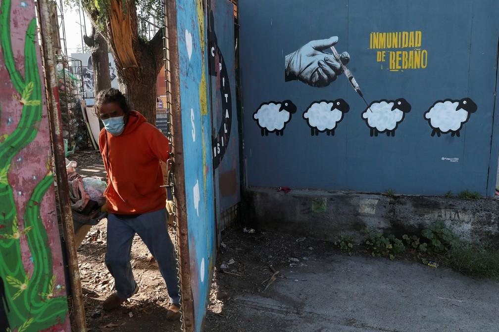Grafite em Santiago, no Chile, mostra os dizeres 'Imunidade de rebanho', em foto de 7 de junho — Foto: Ivan Alvarado/Reuters