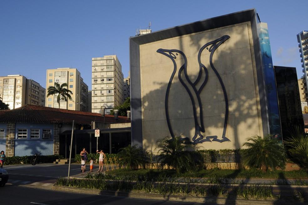 Aquário de Santos reabre neste sábado com novas atrações e capacidade reduzida