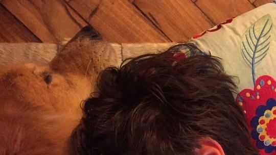 'Amor de Bicho': Francisco Vitti apresenta seu cão Simba