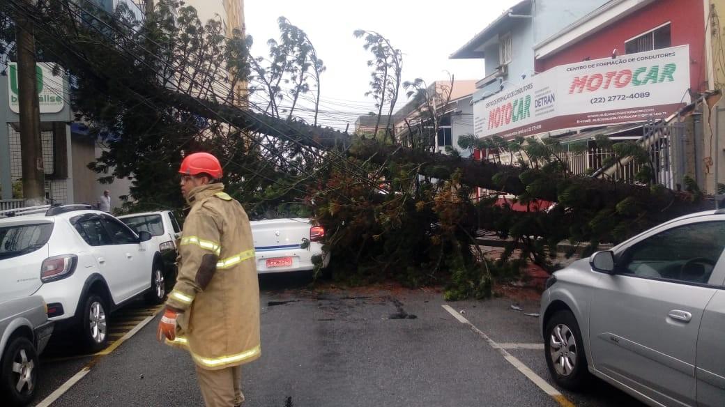 Chuva causa quedas de árvores em Macaé, no RJ  - Notícias - Plantão Diário