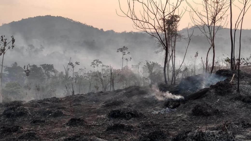 Bombeiros atendem quase 1,5 mil incêndios em 2019 e índice chega ao 'maior da história' em RR