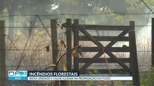 Incêndios florestais se alastram pelo DF