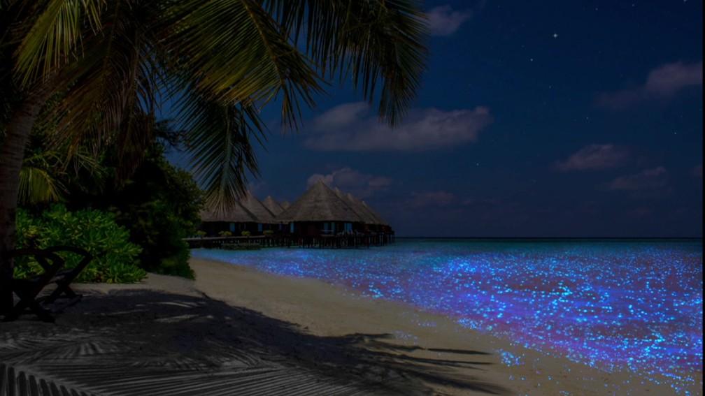 Águas que  banham as Maldivas brilham no escuro — Foto: BBC