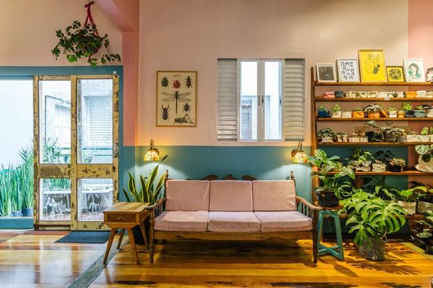 Décor do dia: sala de estar aconchegante com plantas, cores e móveis vintage (Foto: Eduardo Macarios)