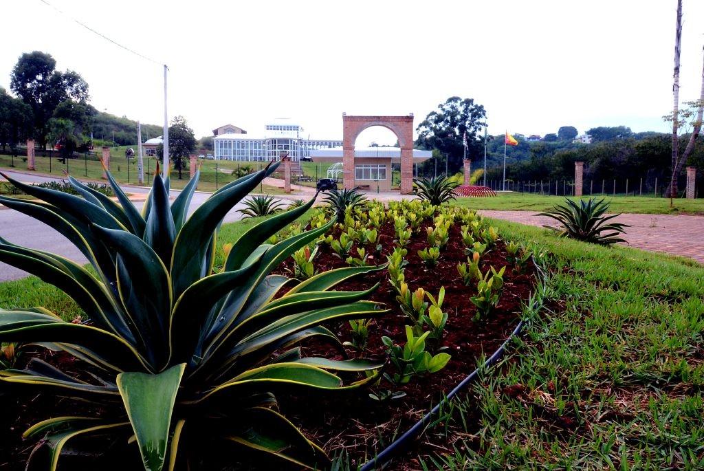 Curso gratuito de jardinagem é oferecido em Sorocaba