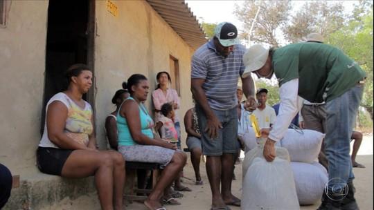 Projeto incentiva coleta de sementes nativas do Cerrado e garante renda para quilombolas de Goiás