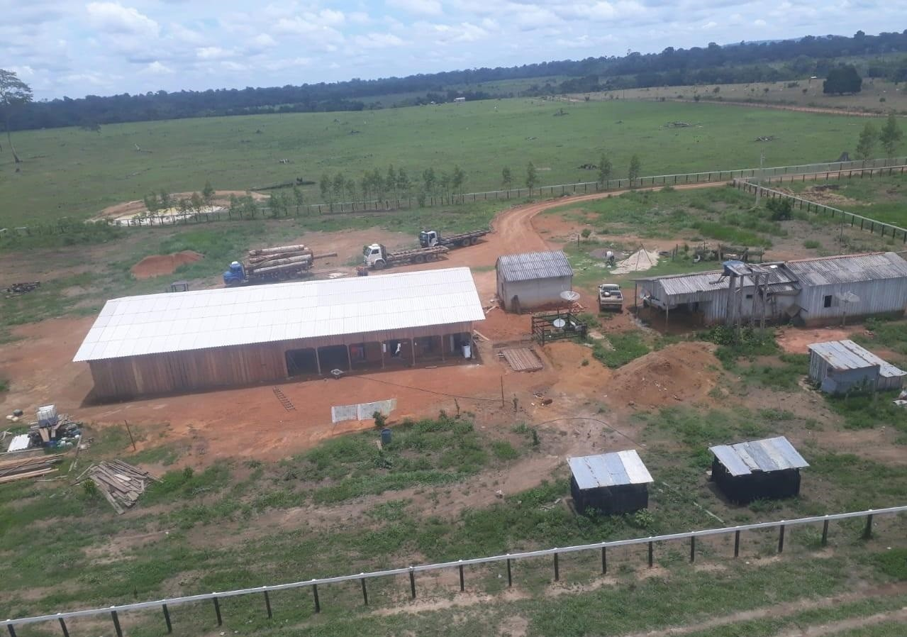 Fiscalização aérea flagra esquema de extração ilegal de madeira em Candeias do Jamari, RO