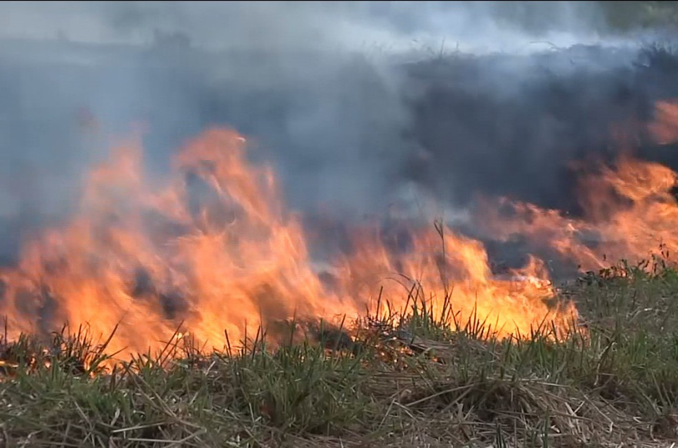 Mais de 3 mil queimadas são registradas no primeiro semestre de 2020 no Maranhão