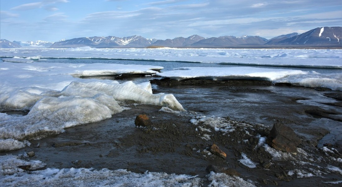 Ilha mais ao norte do mundo é descoberta acidentalmente por cientistas (Foto: Morten Rasch)