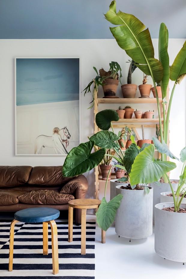 Décor do dia: teto colorido e plantas na sala de estar (Foto:  Lufe Gomes )