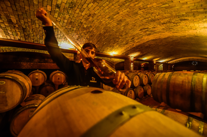 Com visitas reduzidas na pandemia, vinícolas de SC buscam alternativas para melhorar as vendas