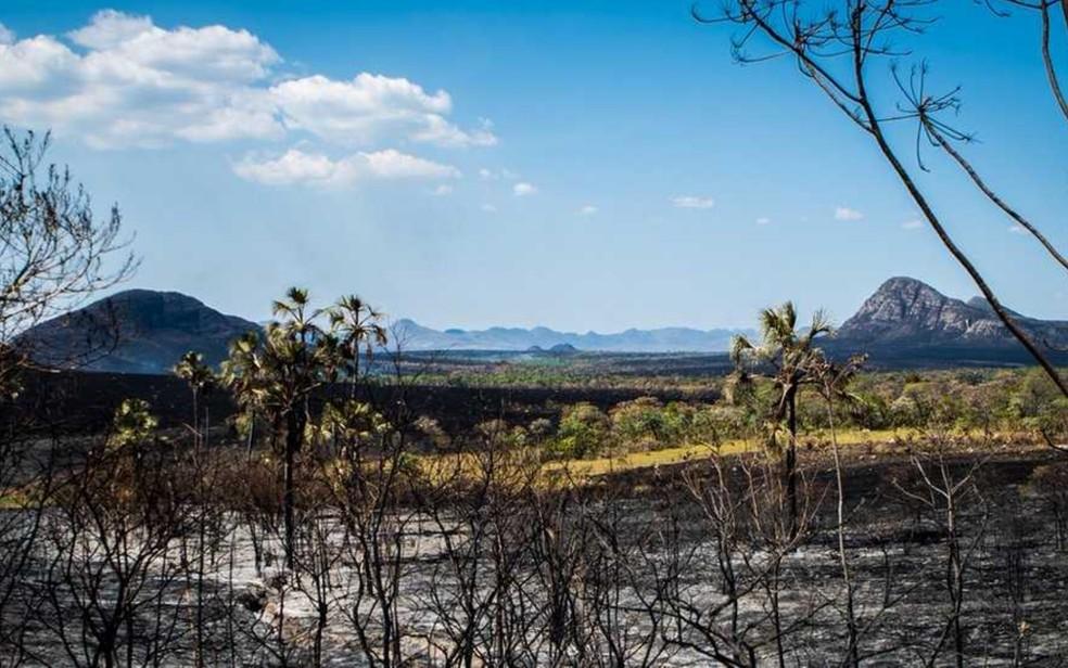 Incêndio no Parque Nacional da Chapada dos Veadeiros ocorre há nove dias (Foto: Davi Boarato/BBC Brasil)