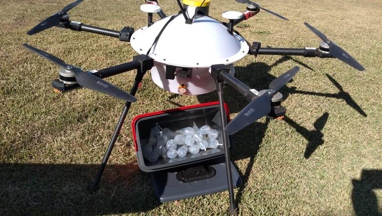 Teste da BRF para usar drones na entrega de insumos agropecuários (Foto: BRF/Divulgação)