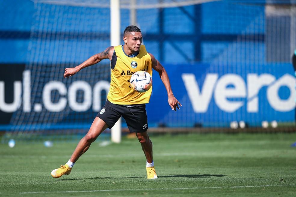 Através do vice de futebol, Paulo Luz, Grêmio confirmou o interesse de ficar com Luiz Fernando para a temporada de 2021 — Foto: Lucas Uebel/Grêmio