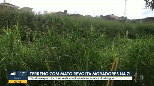 Terreno abandonado na Zona Leste de SP incomoda moradores