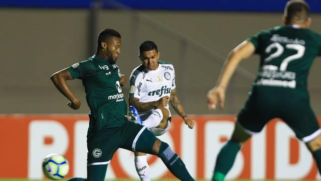 Goiás x Palmeiras pelo Campeonato Brasileiro