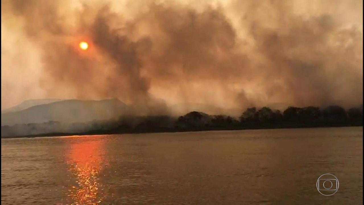Incêndios destroem uma das reigões mais preservadas do pantanal sul-mato-grossense