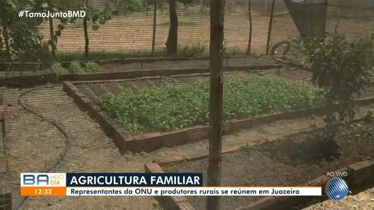 Encontro de Agricultura Familiar é realizado no norte do estado com representantes da ONU