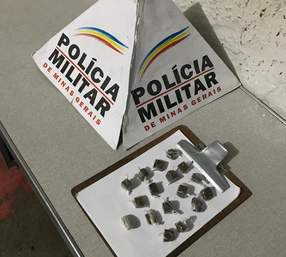 Polícia Militar apreendeu 17 buchas de maconha com a ajuda de cães farejadores, em Montes Claros (Foto: Polícia Militar/Divulgação)