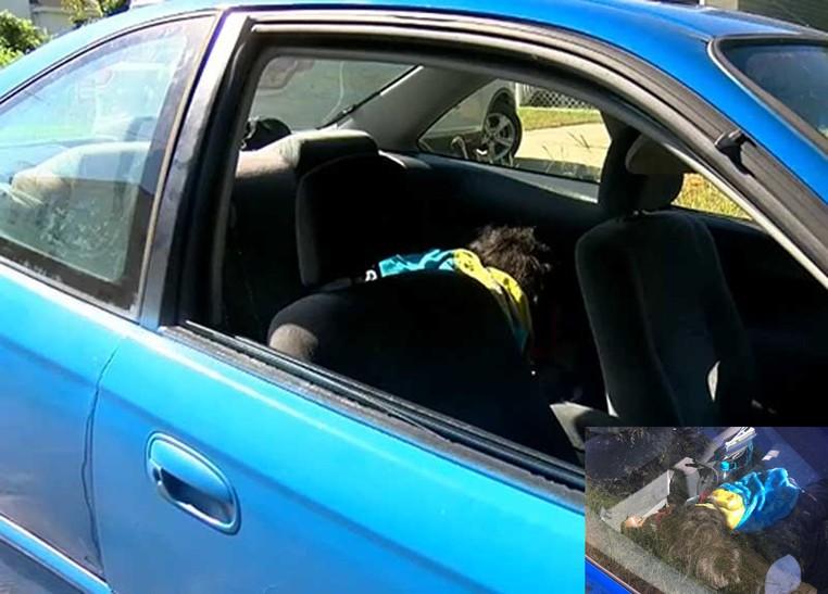 Polícia de Suffolk quebrou vidro de carro após confundir peruca como sendo criança em perigo (Foto: Reprodução/YouTube)