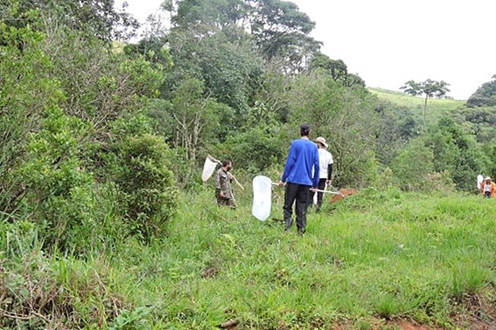 Pesquisados do IF Sul de Minas fazem expedições ao longo da APA do Rio Machado — Foto: Instituto Federal do Sul de Minas