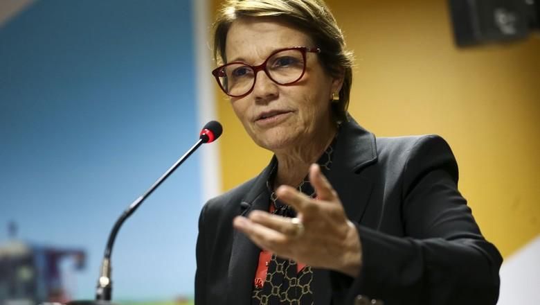 Tereza-Cristina-ministra-agricultura (Foto: Marcelo Camargo/Agência Brasil)