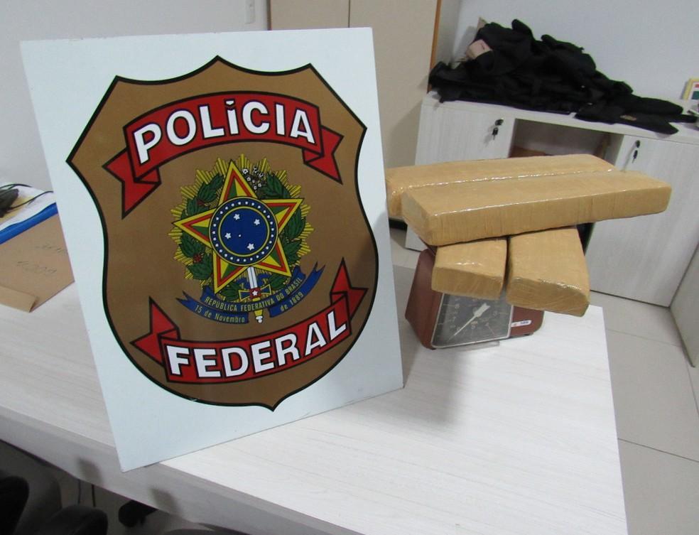 Droga foi apreendida e levada para a Delegacia da Polícia Federal (Foto: Divulgação/Polícia Federal)
