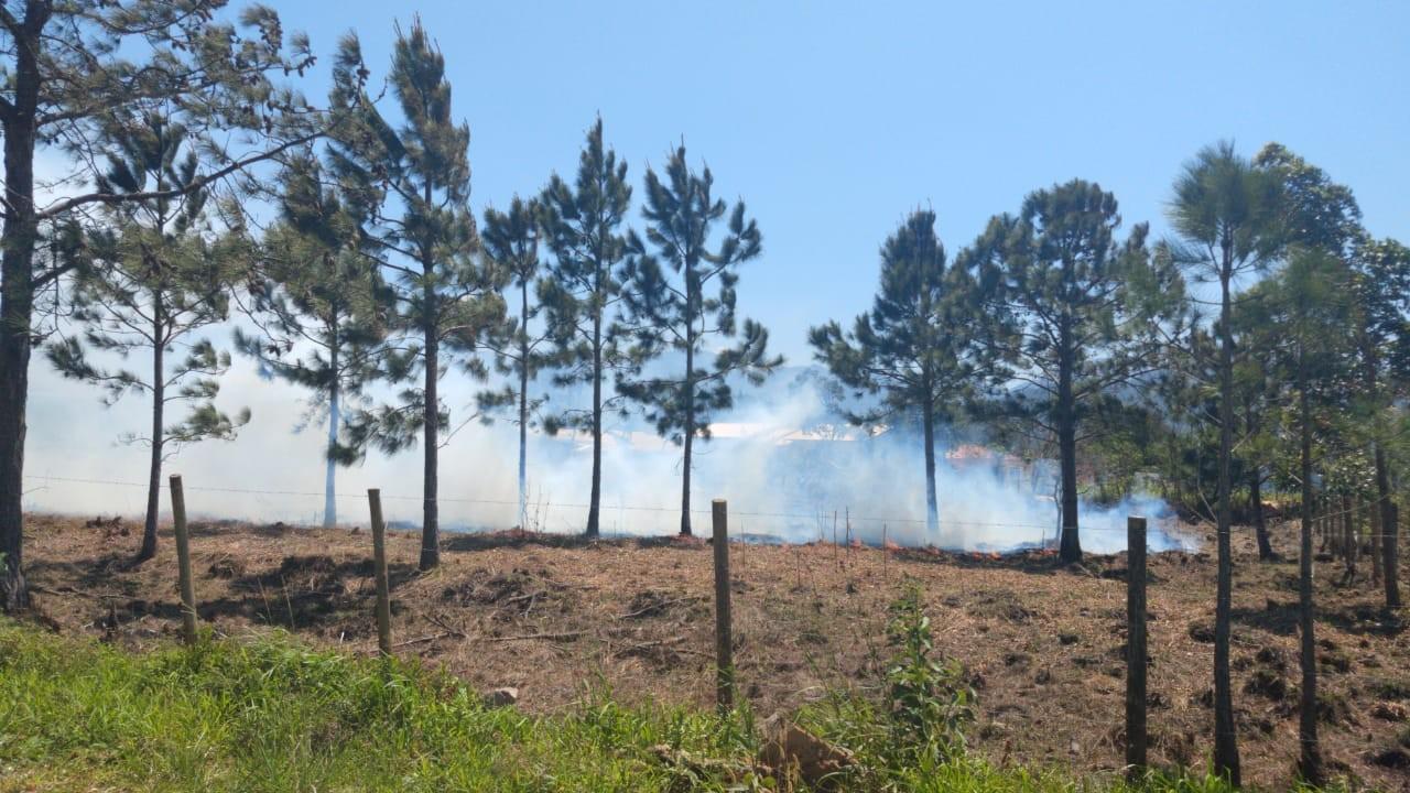 Parque da Serra do Tabuleiro registra novo incêndio neste domingo, em Palhoça - Notícias - Plantão Diário