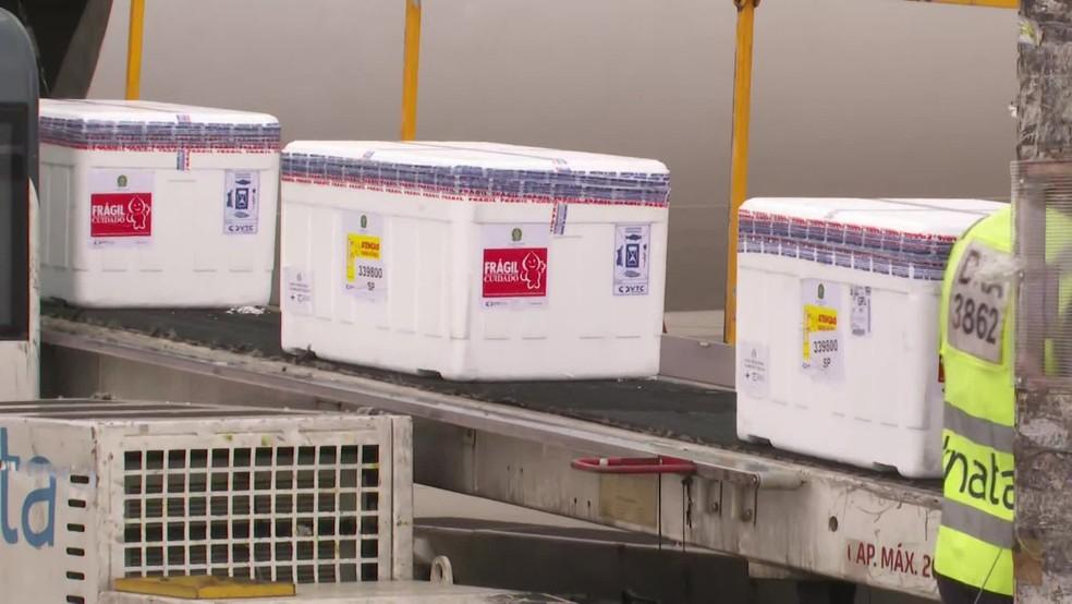 Caixas com as doses da vacina de Oxford sendo descarregadas de avião no Aeroporto de Cumbica em SP — Foto: Reprodução/TV Globo