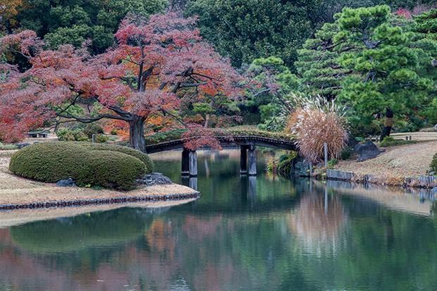 Lifestyle Viagem Tóquio - Rikugien Garden (Foto: Getty Images)