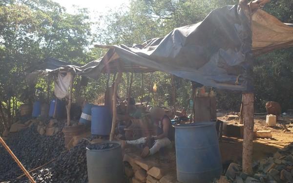 Homens são resgatados de trabalho análogo à escravidão, em Goiás — Foto: Superintendência do Trabalho/Divulgação