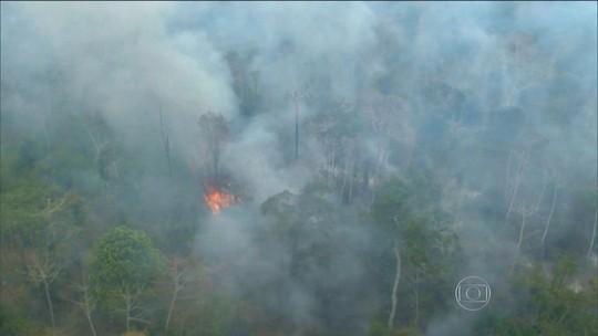 Incêndio destrói parte da Floresta Amazônica no Maranhão