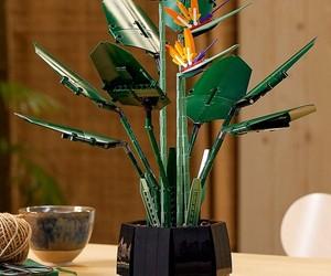 LEGO lança novo conjunto de peças para sua linha botânica, o Birds of Paradise