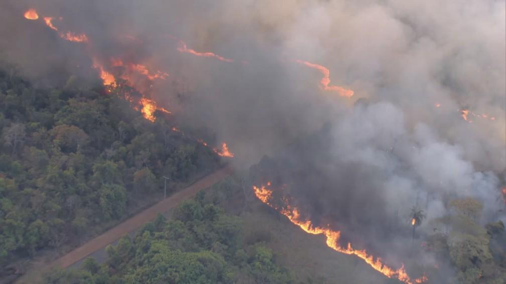 Incêndio florestal em mata próxima à Ermida Dom Bosco, em Brasília — Foto: TV Globo/Reprodução