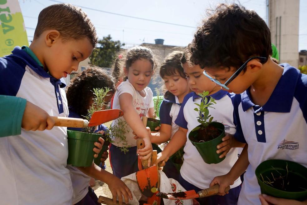 Crianças aprendem a cultivar durante oficina (Foto: Fernando Pilatos/Globo)