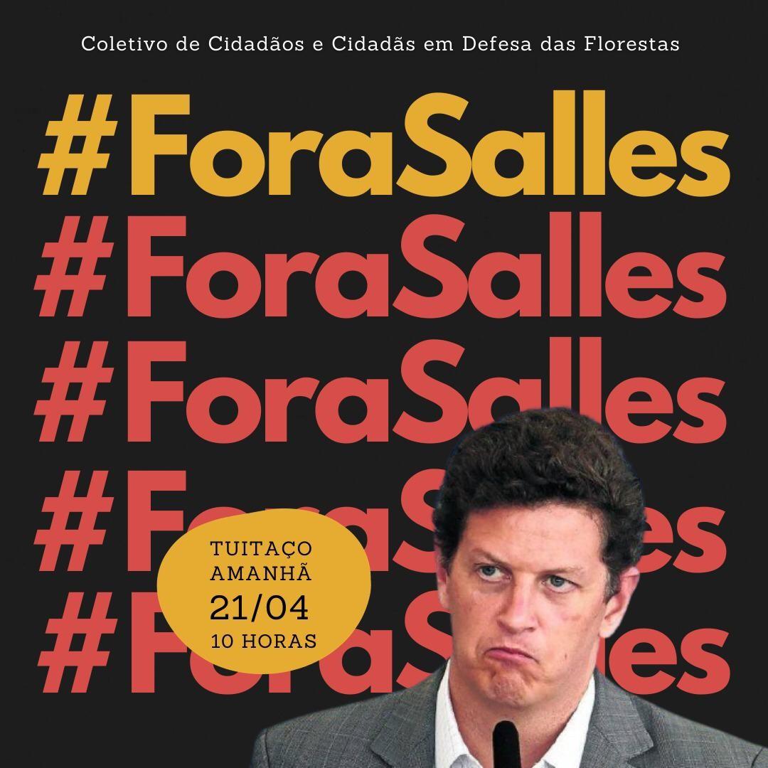 Rede de ambientalistas  fazem, amanhã, um twittaço contra o ministro Ricardo Salles