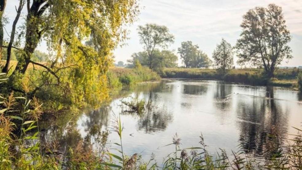 Ameba pode ser encontrada em lagos e zonas úmidas — Foto: Getty Images/BBC