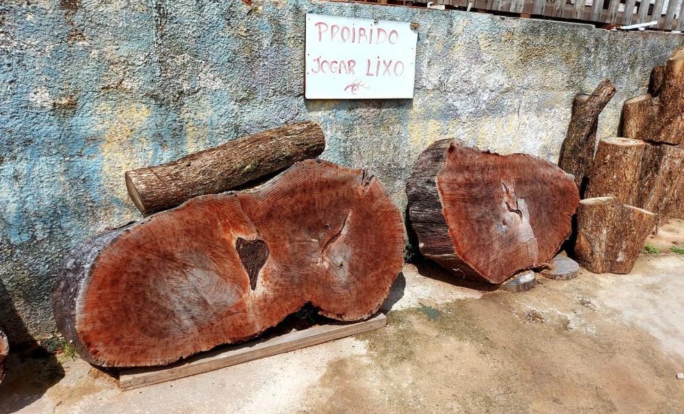 Fiscalização constatou depósito irregular de madeira nativa em Presidente Prudente — Foto: Polícia Militar Ambiental