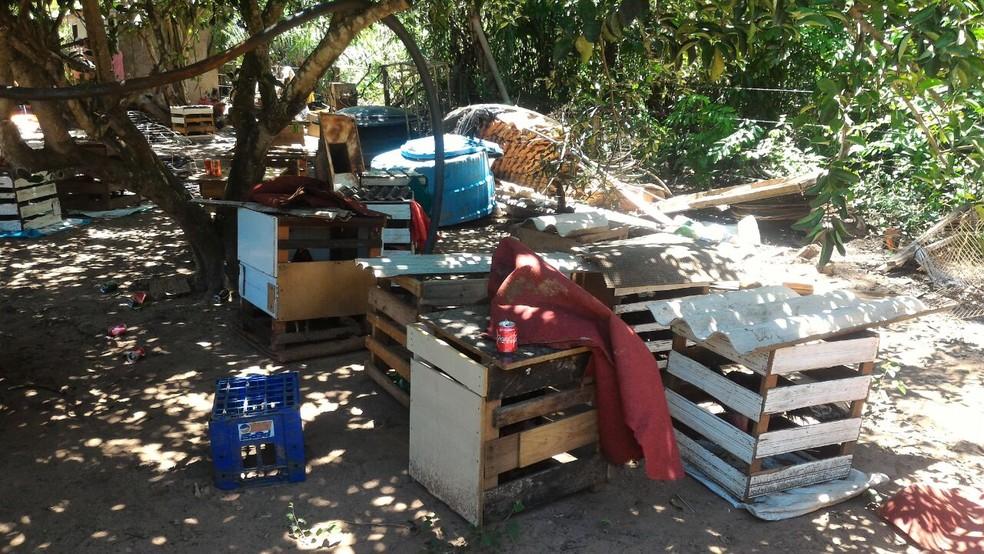 Local onde acontecia as rinhas de galo na chácara em Ribas do Rio Pardo (MS) (Foto: PMA/Divulgação)