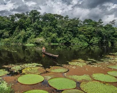 10 fotos de exploradores da NatGeo para apreciar a Amazônia