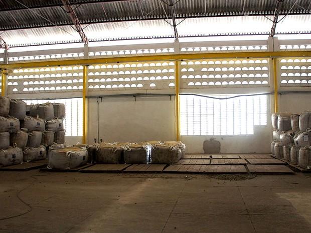 Sem chuva, produção de castanha de caju despenca; efeitos da estiagem são vistos também nos galpões de armazenamento, que ficam quase vazios  (Foto: Anderson Barbosa/G1)