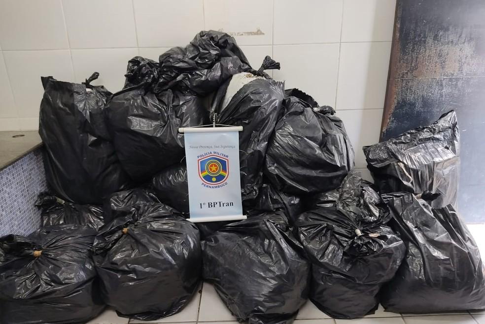 Maconha apreendida em casa no Recife estava distribuída em 15 sacos plásticos pretos — Foto: Polícia Militar/Divulgação